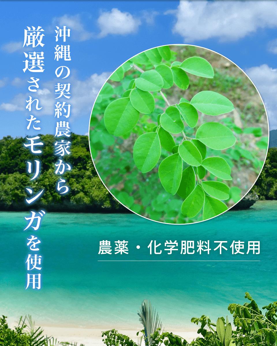 沖縄の契約農家から厳選されたモリンガを使用